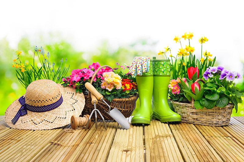 Hobby & garden