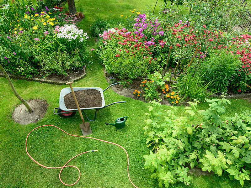 Linea giardino